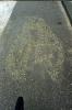 asfaltfiets-110