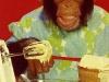 Chimpvrouw-018