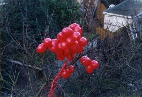 rode-ballons003