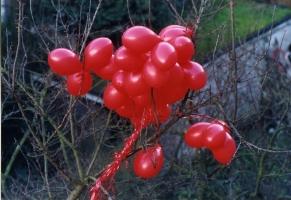 rode-ballons004