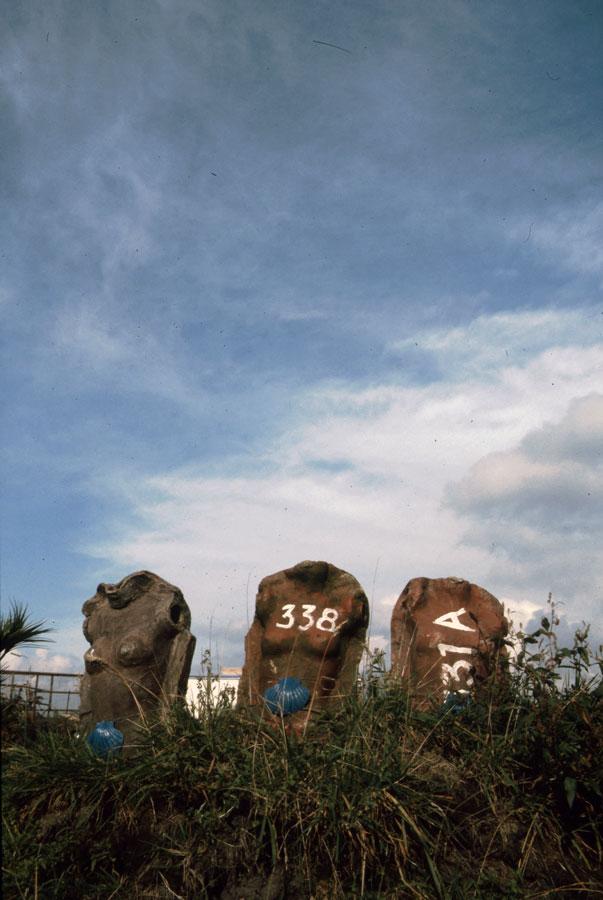 1993-Spaarnwoude-028